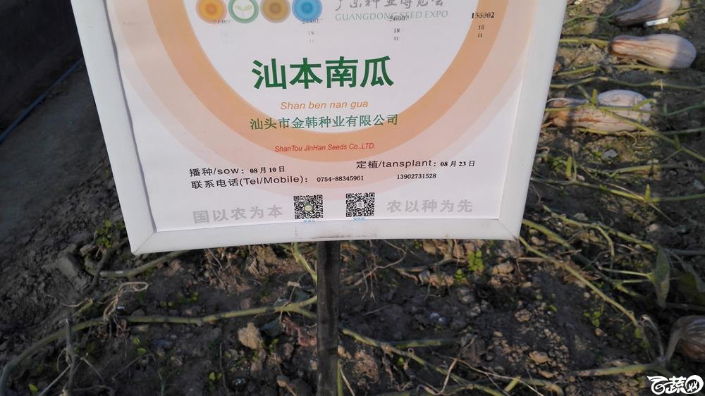 2014年12月12号广东种博会_瓜类_084.jpg