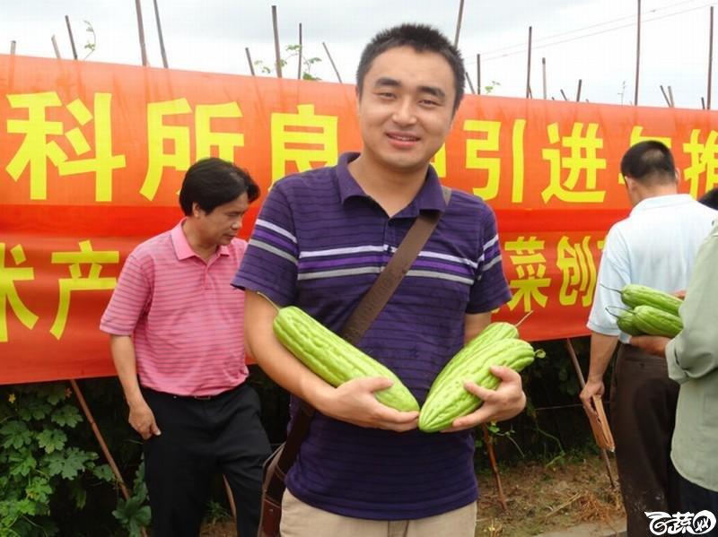 2011茂名粤蔬长绿苦瓜现场会psbCAJXJ75P.jpg