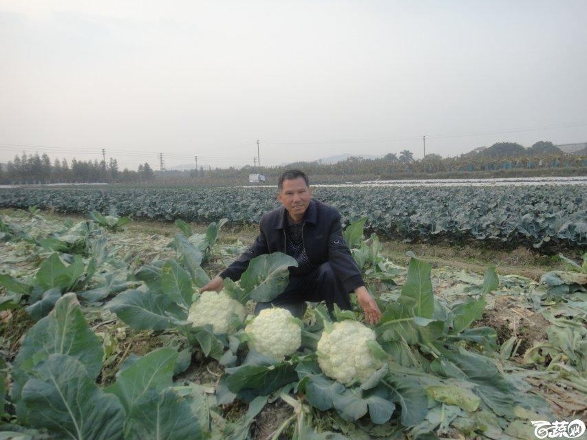 2013年12月18日松花王 DSC02376_33.jpg