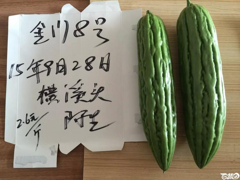 惠州苦瓜-最近 2015-10-25_138.jpg