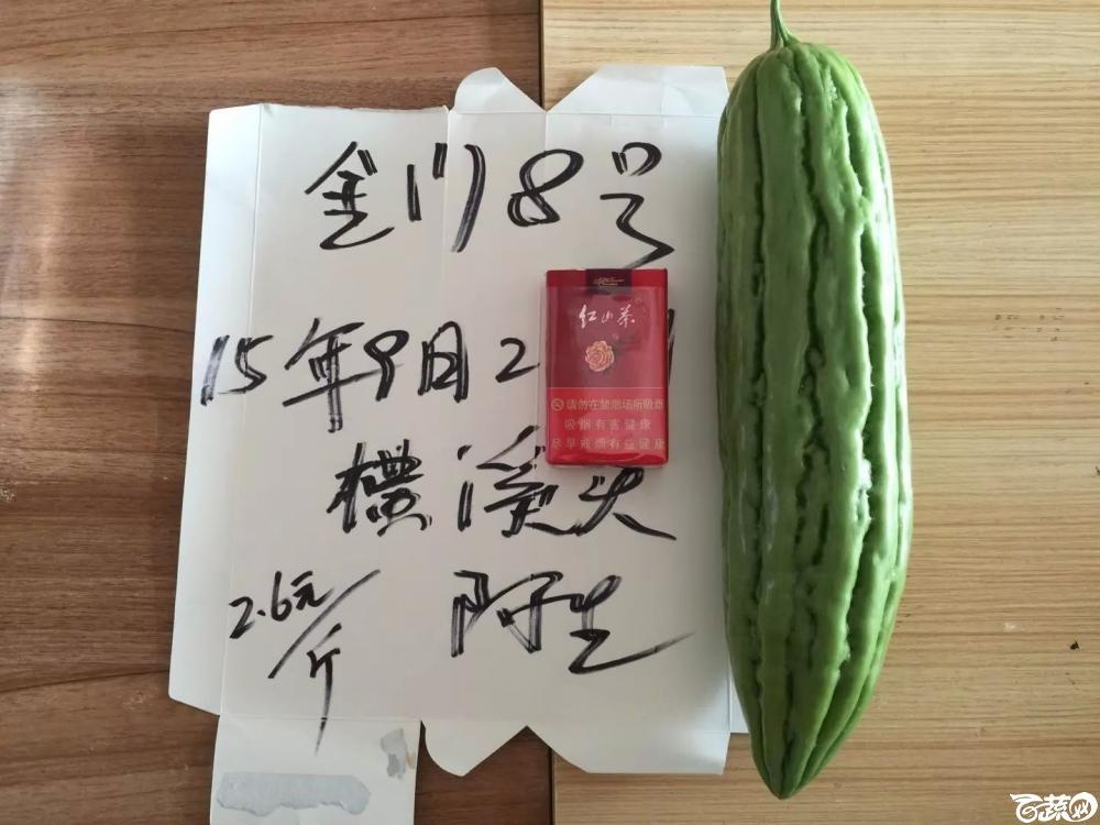 惠州苦瓜-最近 2015-10-25_140.jpg