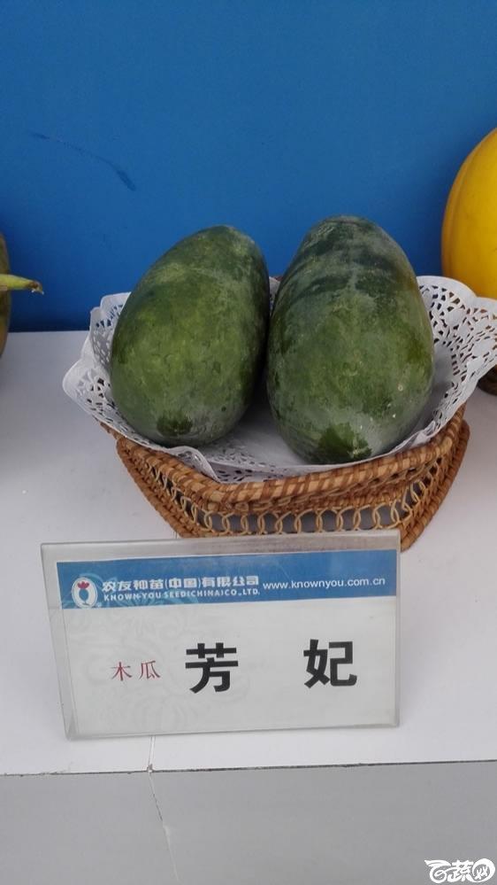2015年双12广东种业博览会全国优良蔬菜品种田间表现-台湾农友种苗芳妃木瓜.jpg