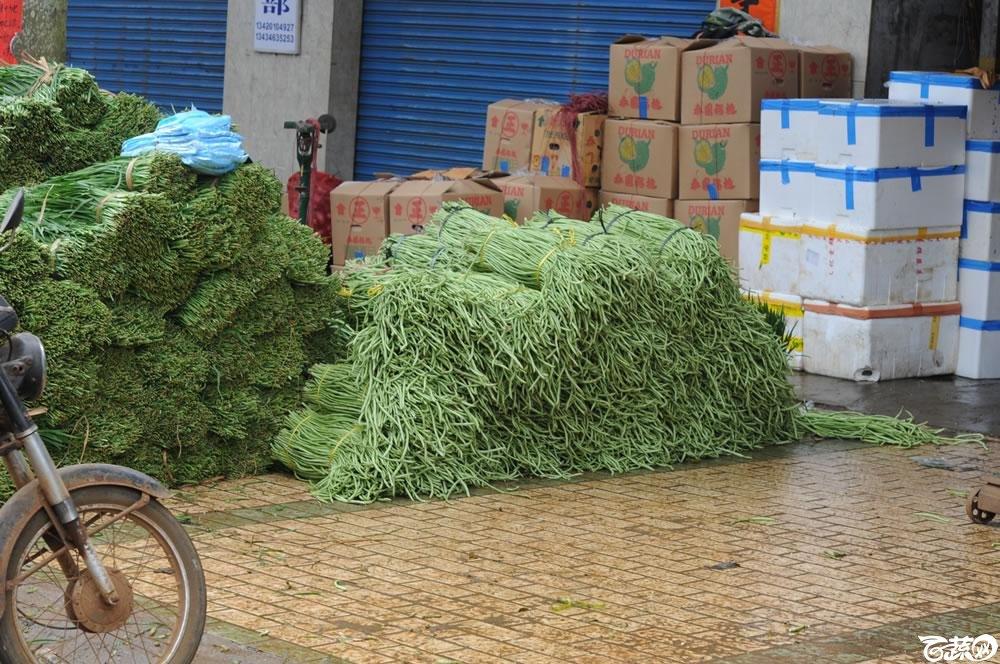 2011年0513湛江徐闻市场调查蔬菜品种销售情况 014.jpg