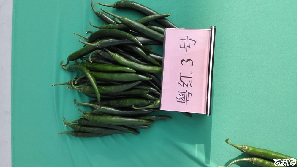2014年广东蔬菜新品种新技术展示会-室内新品种展示-005.jpg