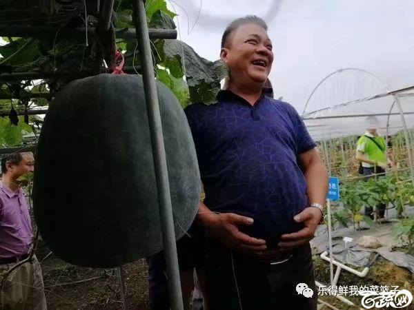 2018梅州蔬菜良种良法展示观摩培训会-瓜类-001.jpg